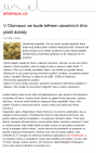 b_89_141_16777215_00_images_mesta_olomouc_clanky_clanek_1_olo.png